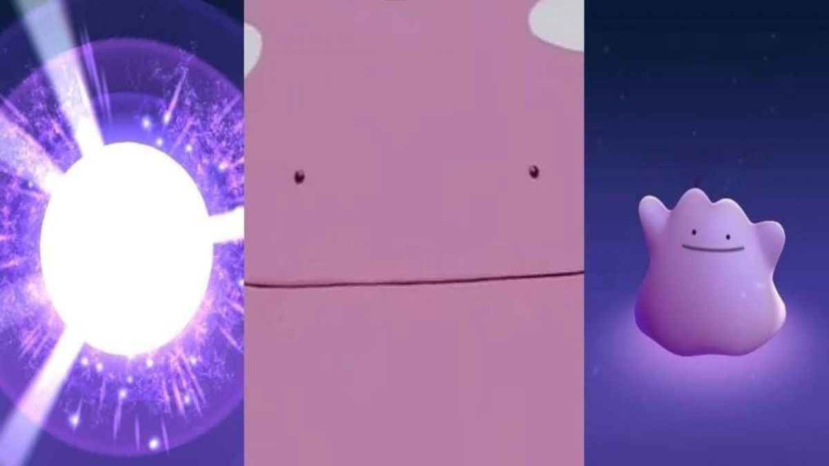 Catching Ditto In Roblox Pokemon Go Pokemon Trainer Tips Pokemon Go Ditto How To Encounter And Catch Pocket Tactics