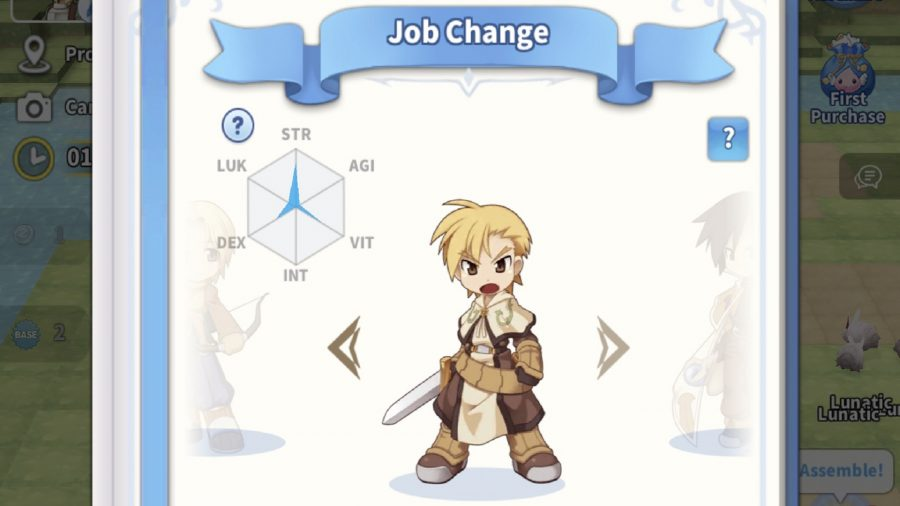 A swordsman and his stats