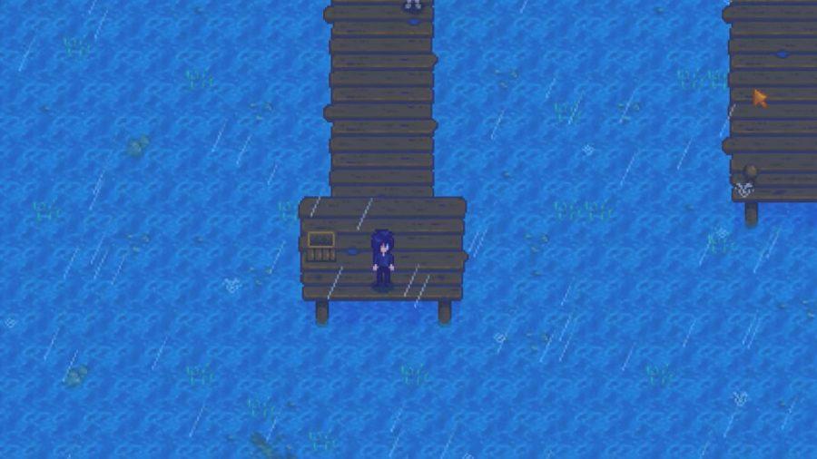 Sebastian standing on a dock