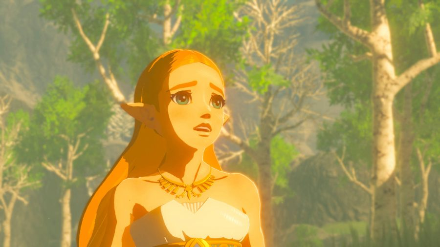 Breath of the Wild's Zelda with light shining onto her face