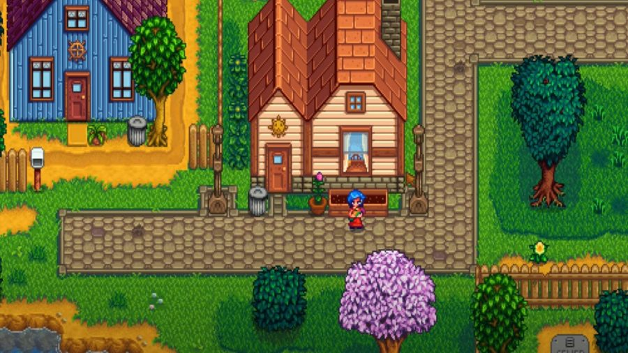 Stardew Valley's Emily standing outside her house